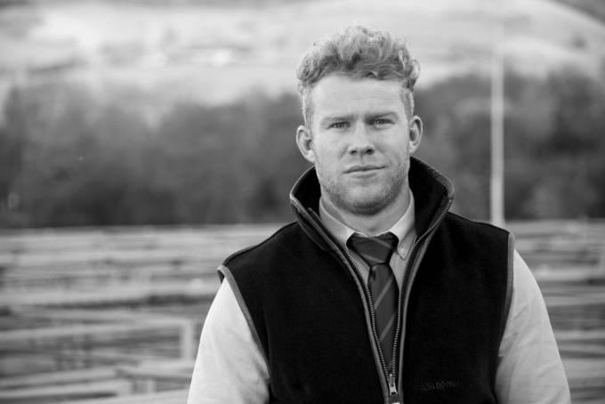 Tom Davies, Welshpool Livestock Sales